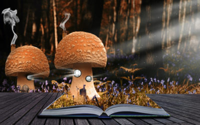Magical books and activities